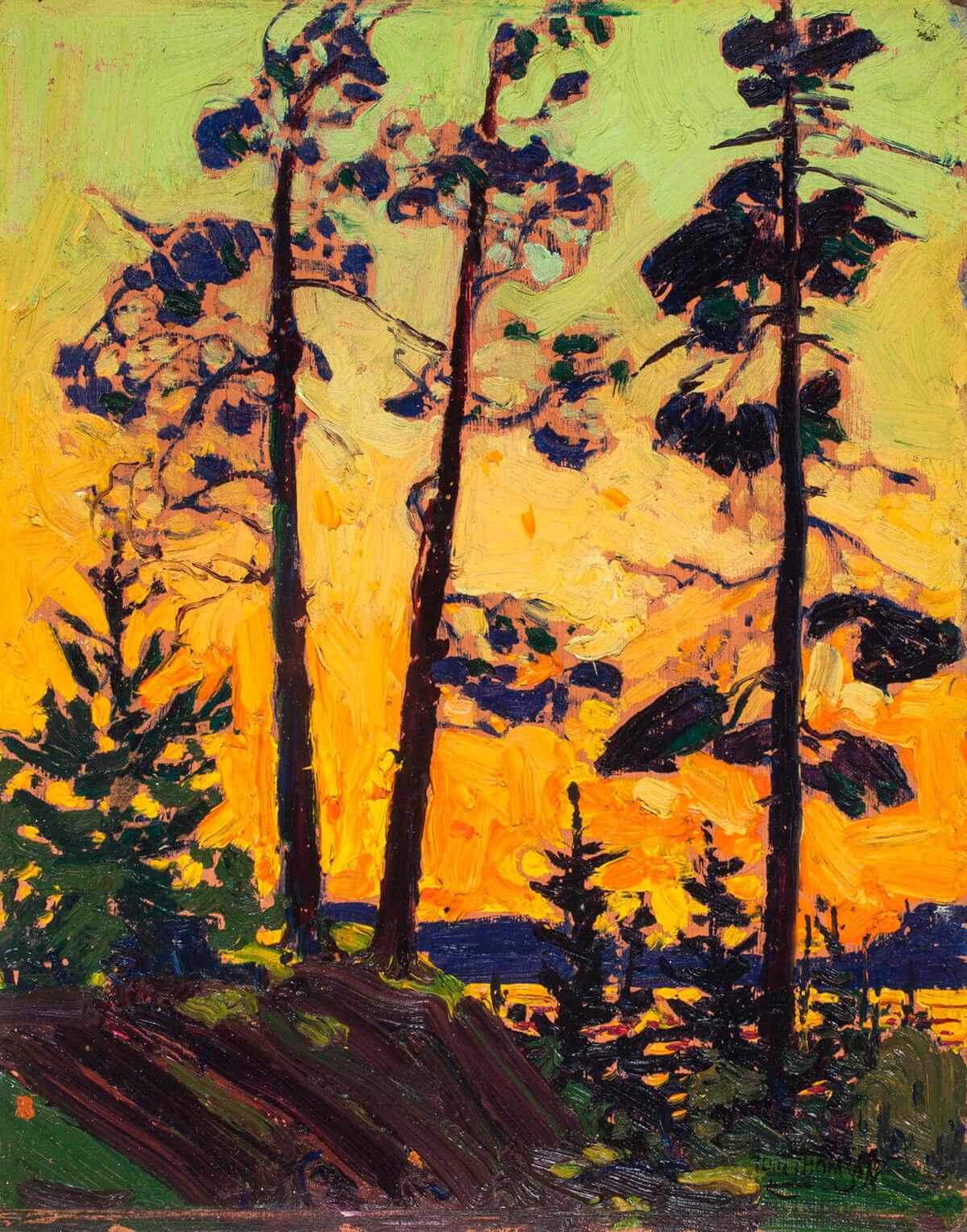 Tom Thomson, Pine Trees at Sunset, 1915
