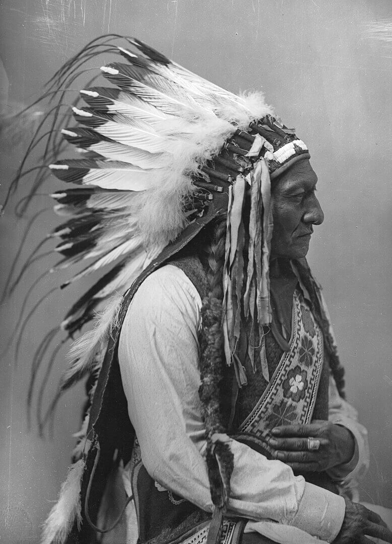 Art Canada Institute, William Notman & Son, Sitting Bull, 1885