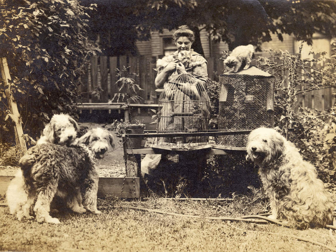 Art Canada Institute, Emily Carr, Carr with her pets, 1918
