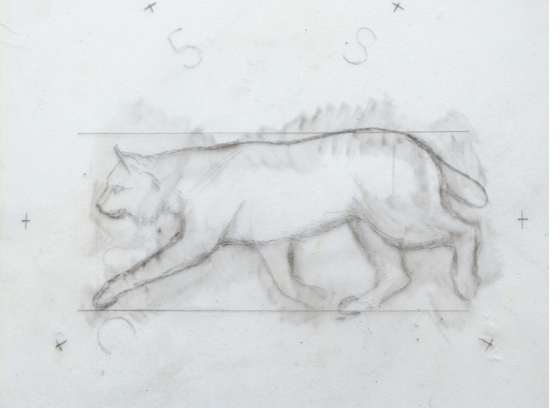 Design for coin, bobcat / Study for 25 cent coin